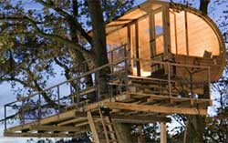 cabane design baumraum
