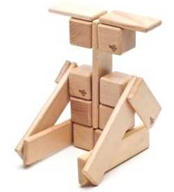 blocks tegu